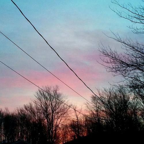 Tree Sky Outdoors No People Day Powerlines Sunrise Beauty In Nature