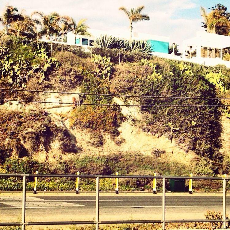 House On The Hill Malibu