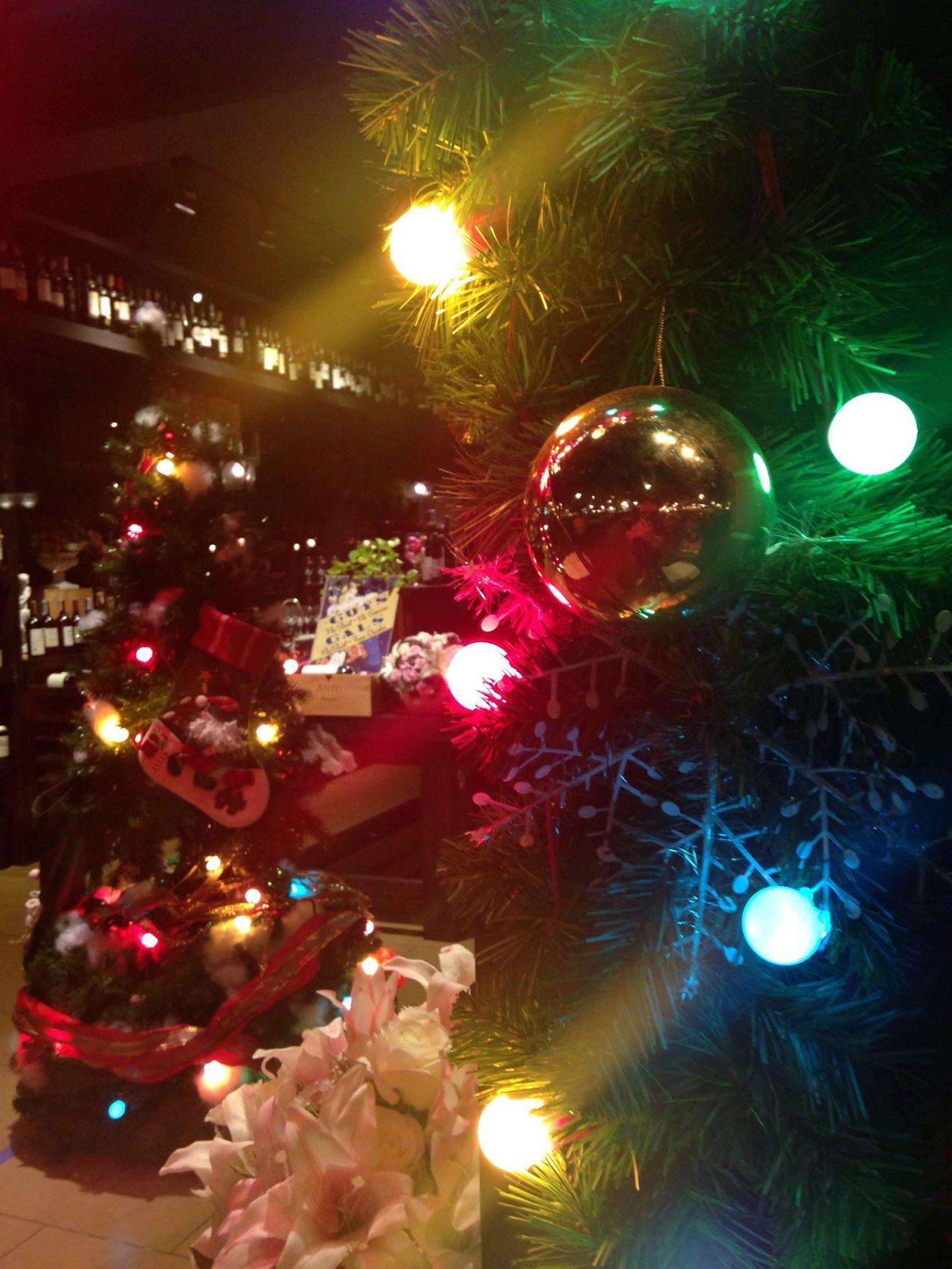 Christmas Tree Happy Season Christmastime Merry Christmas!