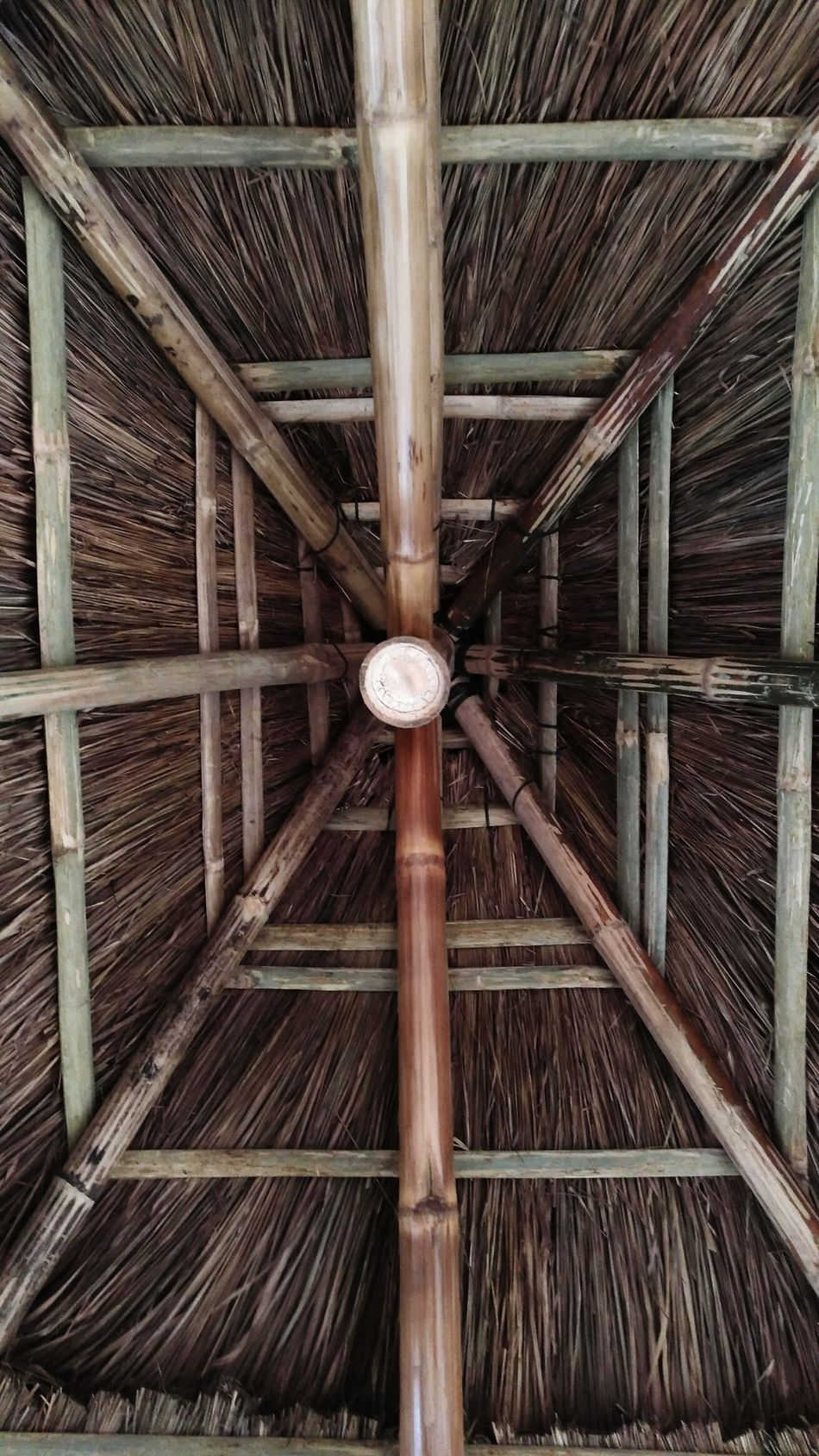 Beneath a hut Architecture Bamboo - Material Bamboodesign Man Made Object