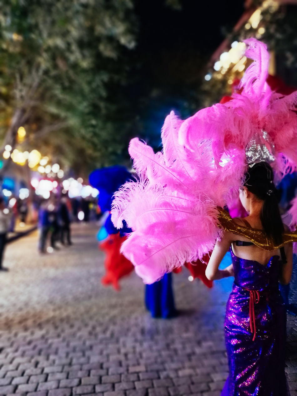 Carnival Close-up Focus On Foreground Freshness In Bloom Night Road Selective Focus
