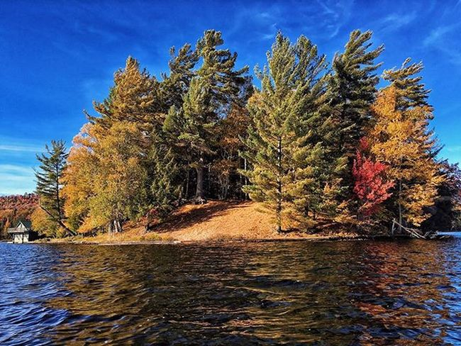 Fall Colors on 3rd lake, Adirondacks. ADK Adventure Explore Adirondacks Visitadirondacks Vscocam Snapseed Beautiful Photooftheday IPhoneography NY Color Fall 2015  Pixelpanda Changingcolors Autumn Blueskies Adkpicoftheweek Newyork