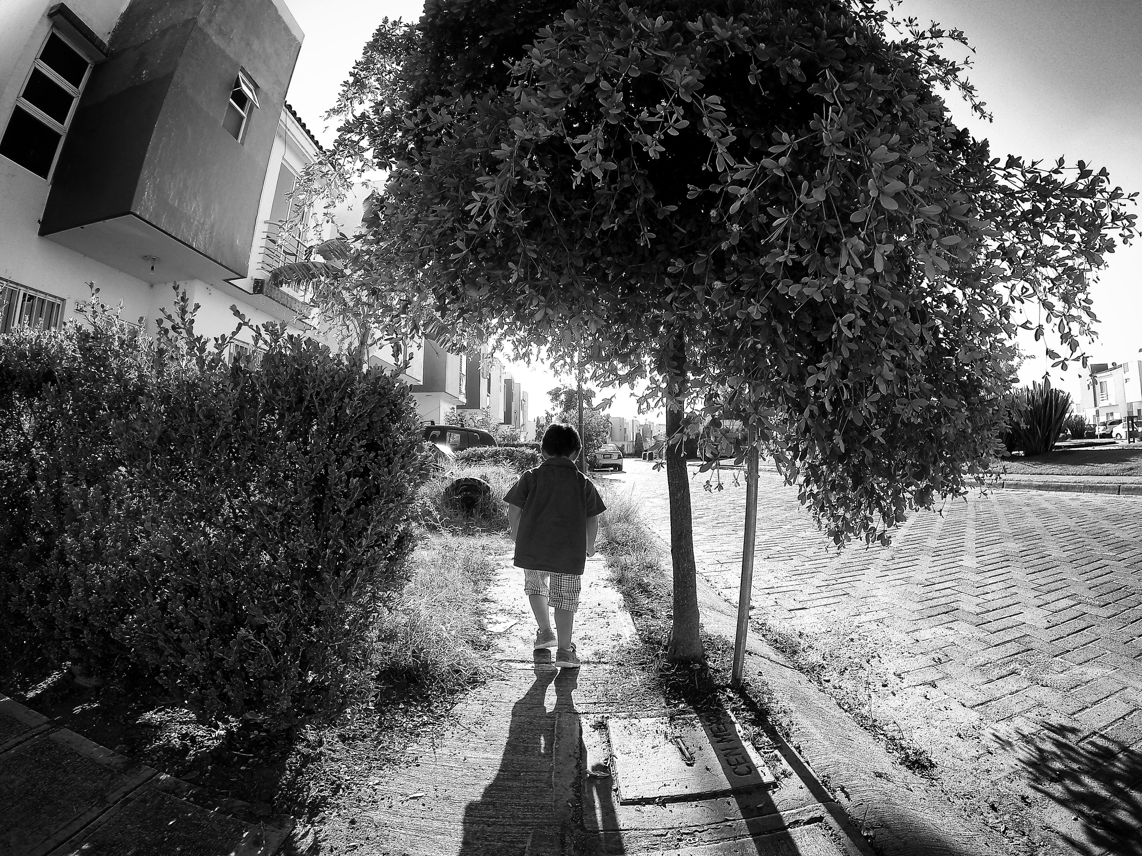 building exterior, architecture, built structure, lifestyles, walking, rear view, street, full length, men, city, leisure activity, shadow, sunlight, person, tree, building, day, city life