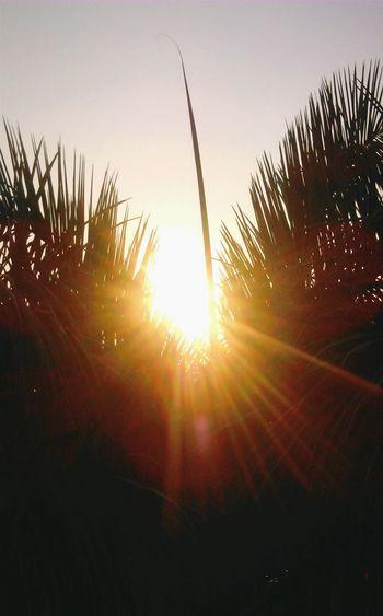 Glitch Sunlight ☀ Feel Positive
