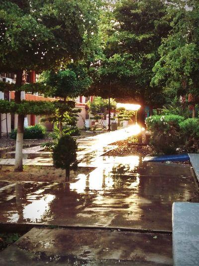 Colours Rain Sunny Day Motorolamotog Hello World Relaxing