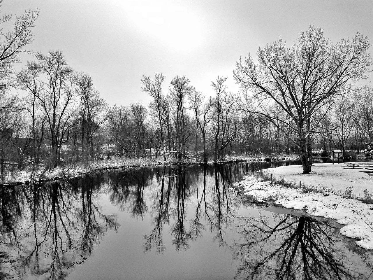 bare tree, winter, tree, nature, cold temperature, snow, reflection, tranquility, tranquil scene, beauty in nature, scenics, day, outdoors, lake, branch, water, no people, sky, landscape