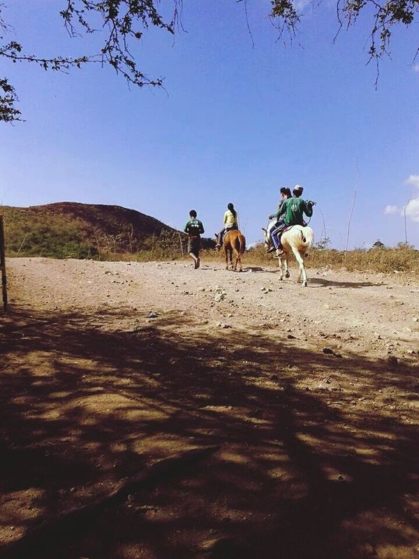 Horse Back Riding at Taal Volcano