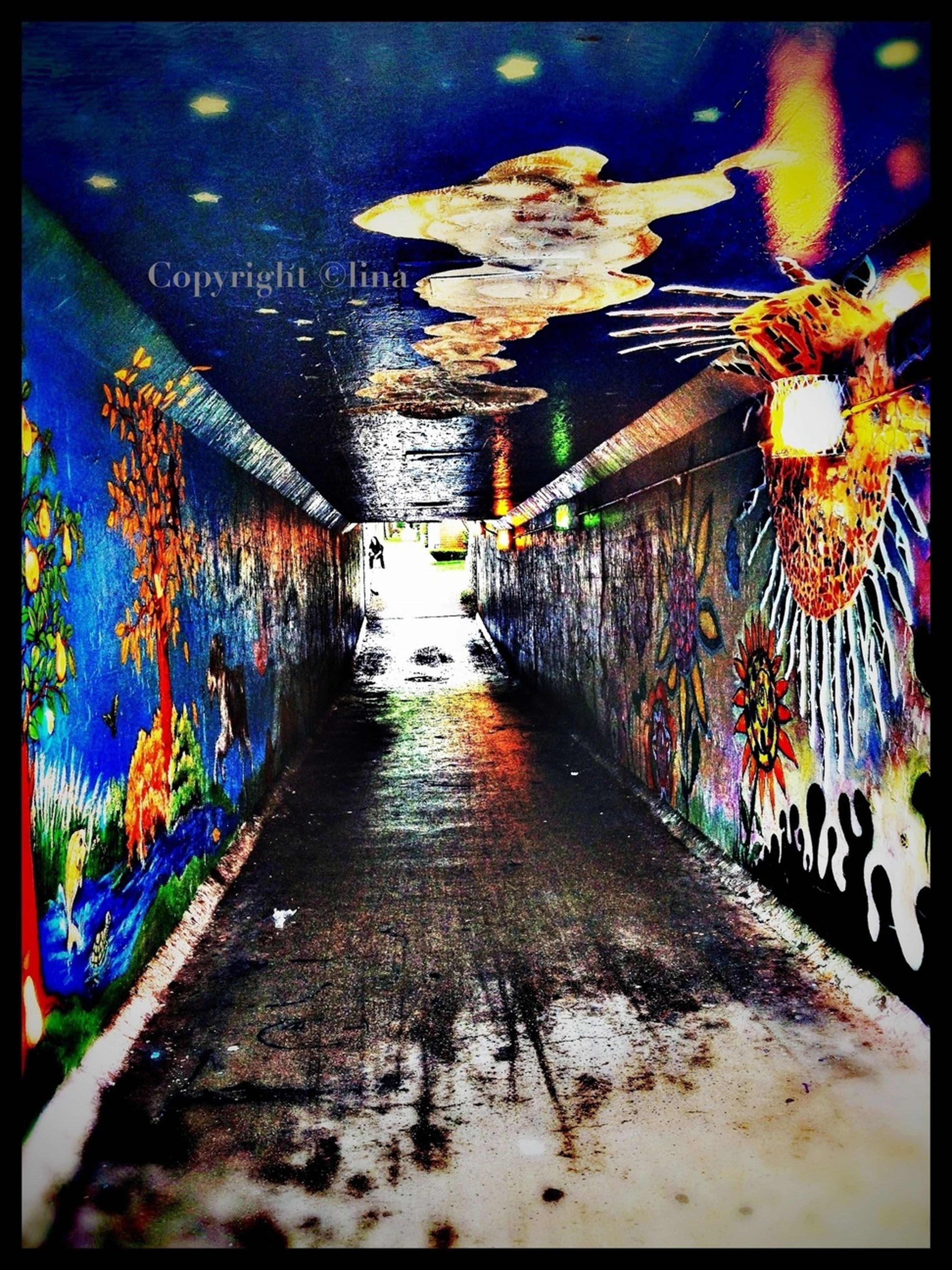 transfer print, auto post production filter, architecture, built structure, the way forward, water, illuminated, reflection, diminishing perspective, building exterior, graffiti, multi colored, indoors, wall - building feature, no people, walkway, vanishing point, street, puddle