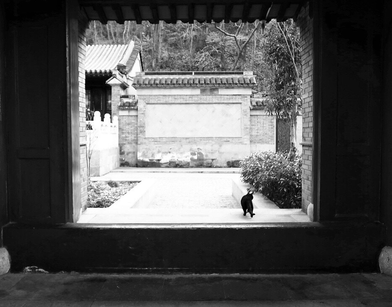 Qixia Temple Chinesetemple Door Black & White Taking Photos Nanjing China