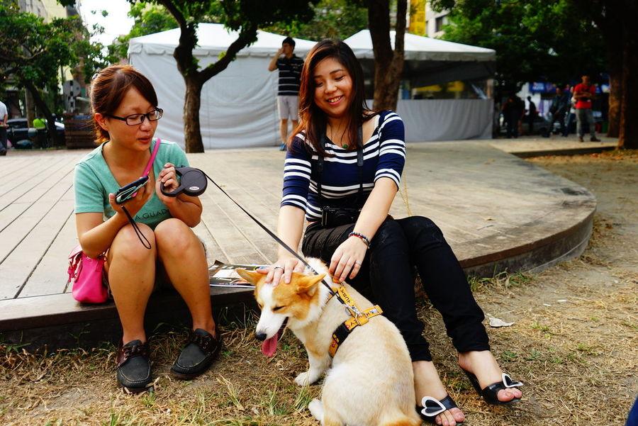 Global EyeEm Adventure - Taichung Taiwan Taichung Dog