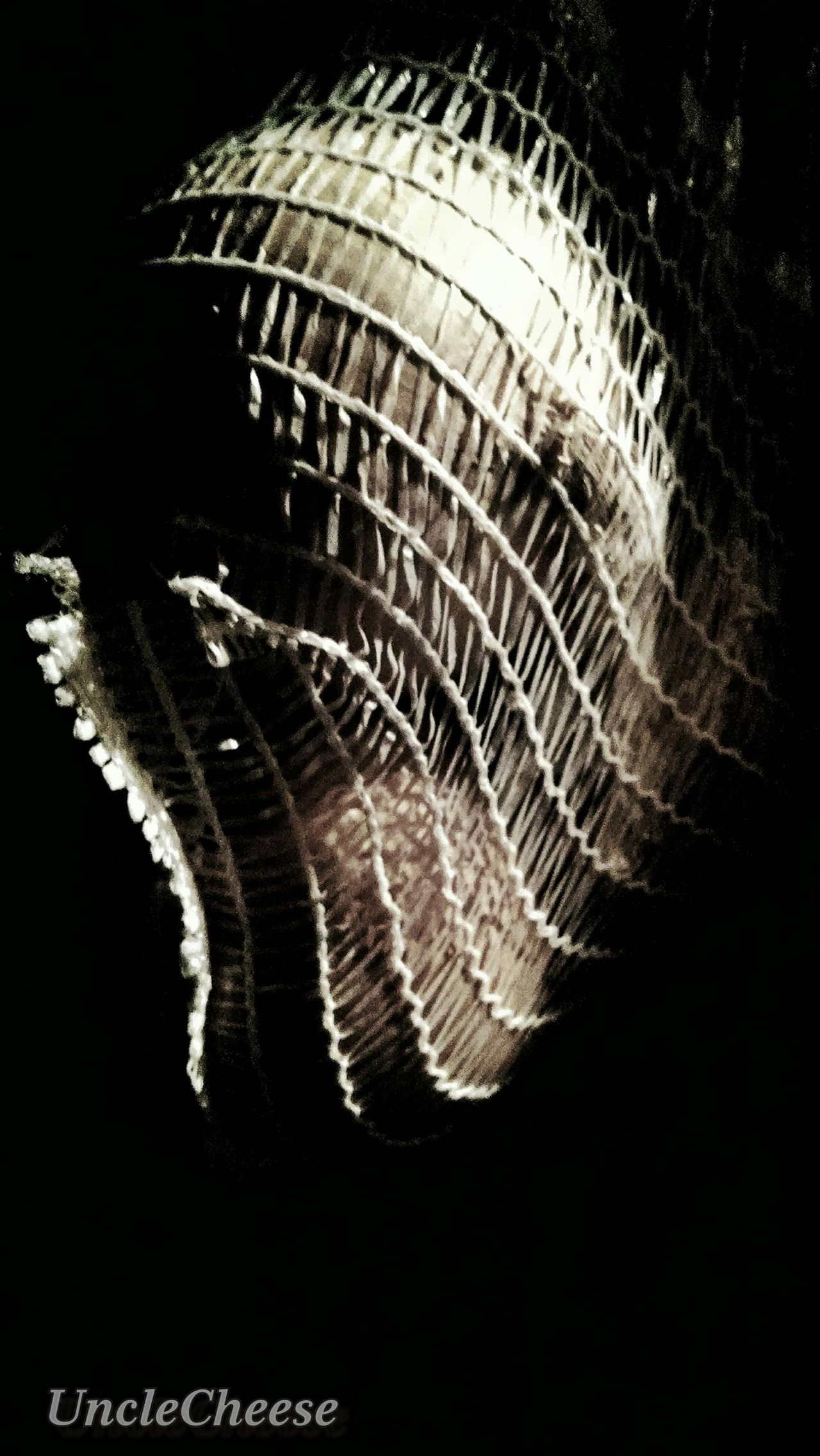 Sensualart Light And Shadow Fishnet Onions Lighting Shadows Better Look Twice Beauty In Ordinary Things Anatomyhumor StreamzooVille Streamzoofamily Streamzoo TheVilleAtEyeem From My Point Of View No People From Where I Stand