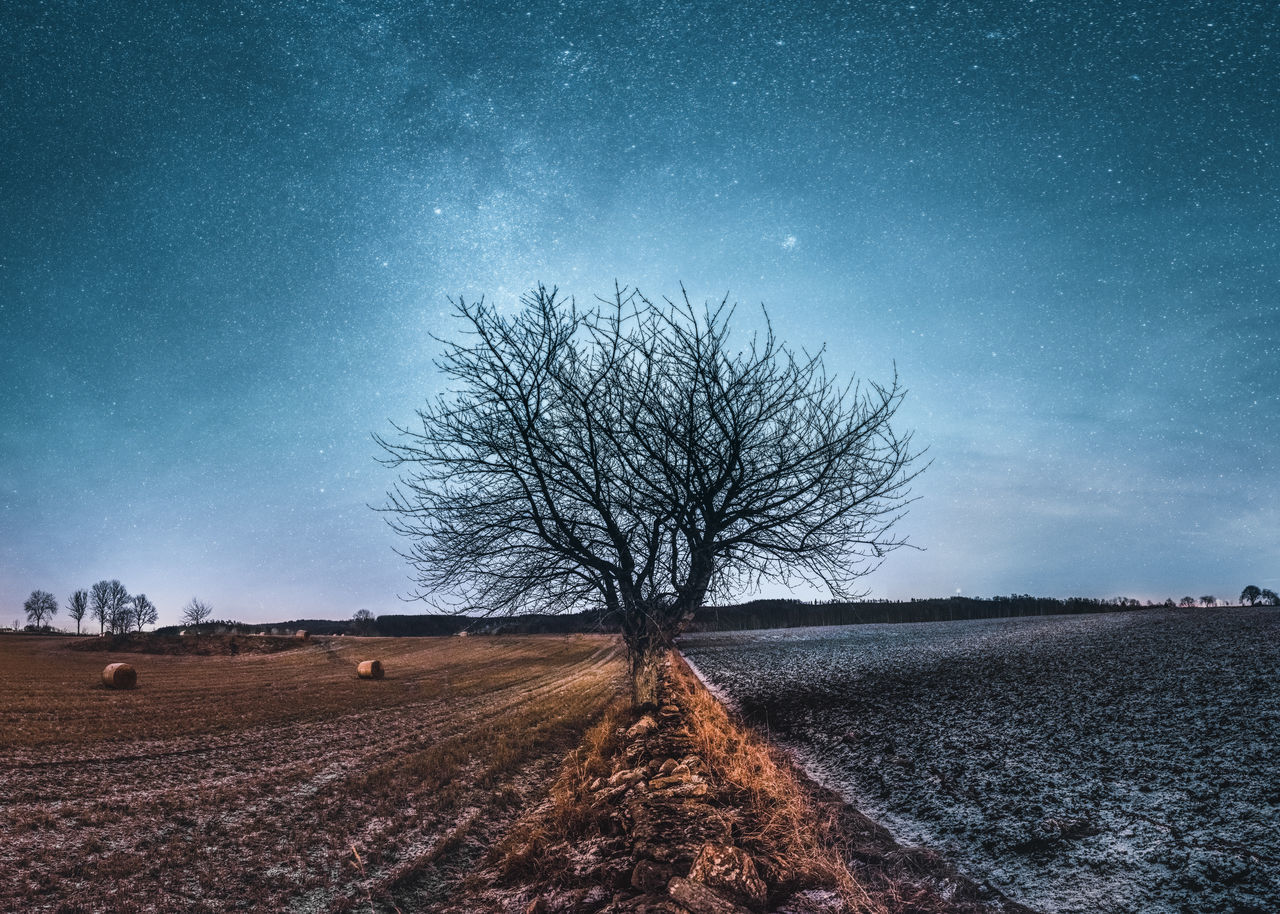 Contact. Astronomy Blue Farming Field Field Galaxy Landscape Milky Way Nature Night No People Outdoors Rural Scene Sky Space Star - Space Tree Tree