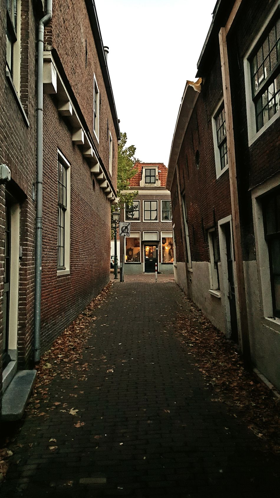 Architecture Building Exterior Built Structure House Dutch Cities Alleyways The Way Forward Taking Photos Alley Old Town Taking Pictures Hoorn City Architecture_collection Alleyway Netherlands Hoorn, Netherlands Dutch House Dutch Architecture Old Buildings Autumn Exploring New Ground Architectural Detail Scenics Travel Destinations