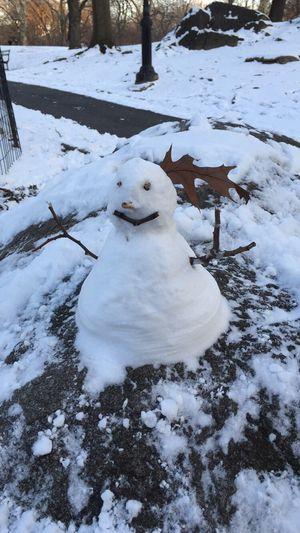 snowman ❄️⛄️ Enjoying Life Snow Winter Taking Photos