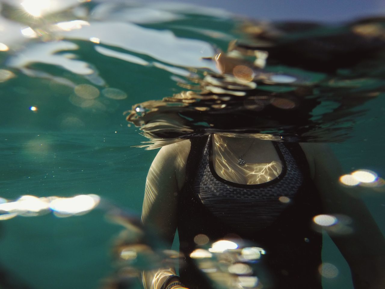 Beautiful stock photos of underwater, water, animals in the wild, one animal, close-up