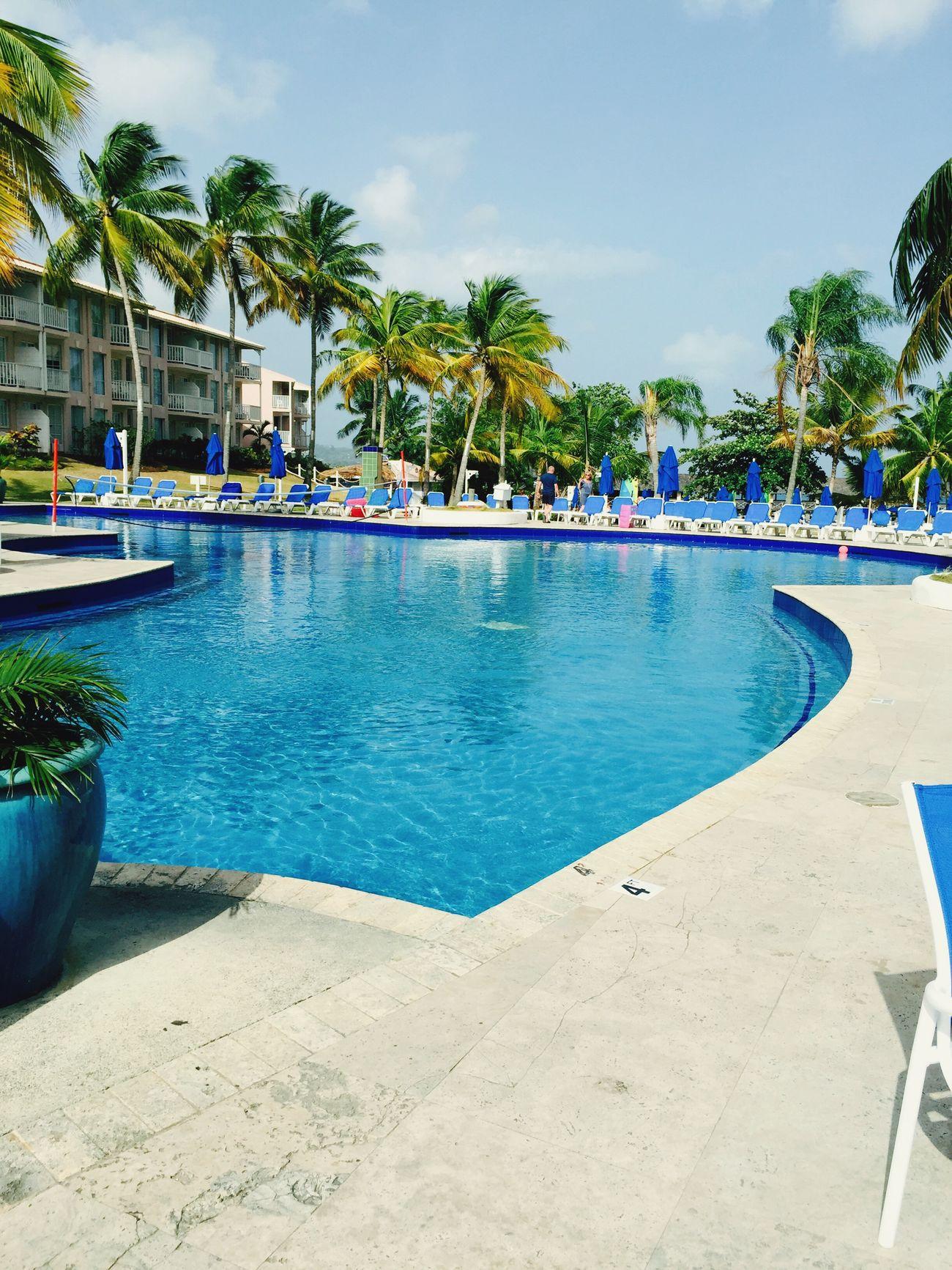 Holiday Pool Beautifulpool Blue Enjoying The Sun StLucia