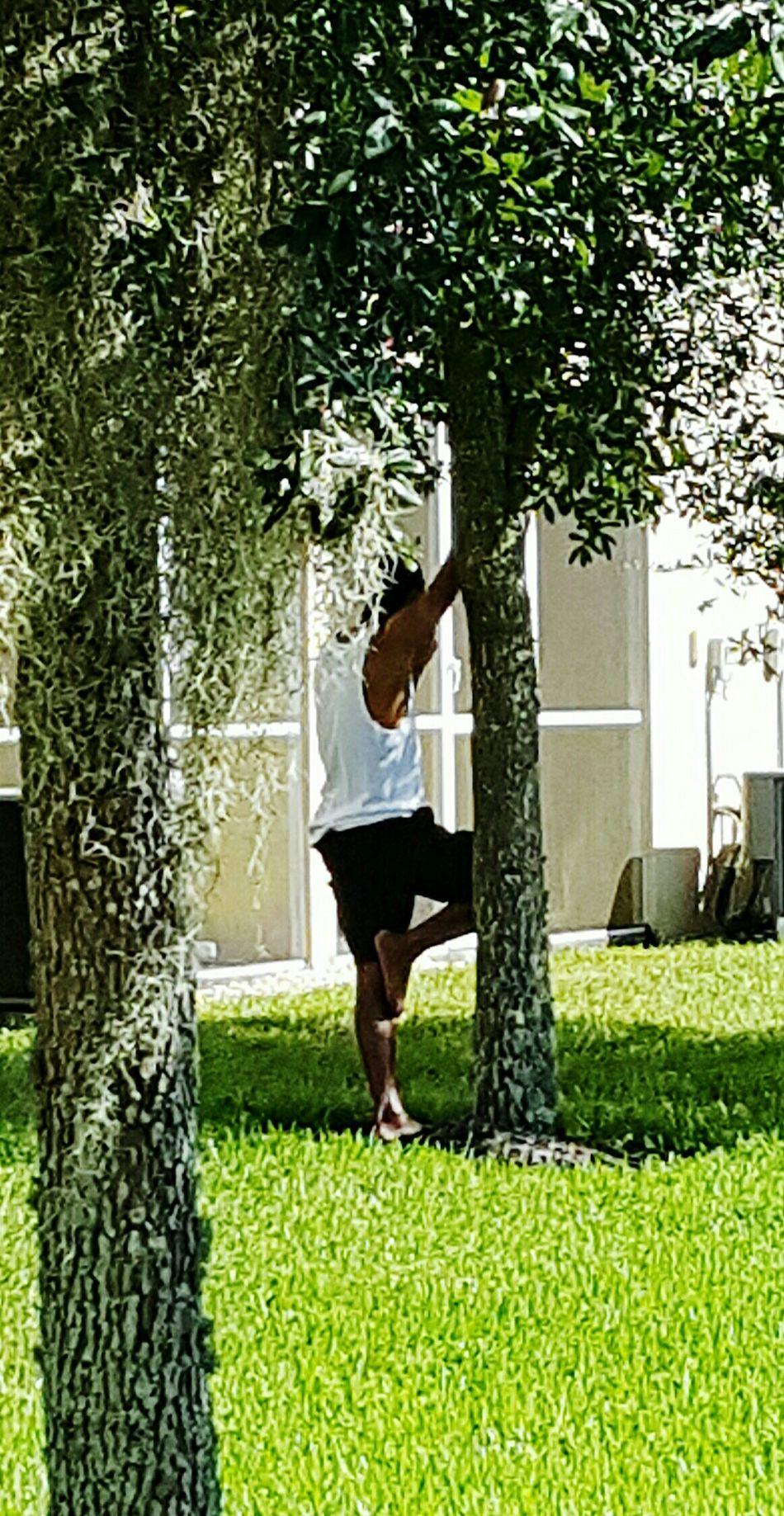 Deceptively Simple The Week On Eyem EyeEm Best Shots Open Edit Hanging Out Lonely Man EyeEm Nature Lover In Zephyrhills Fl.