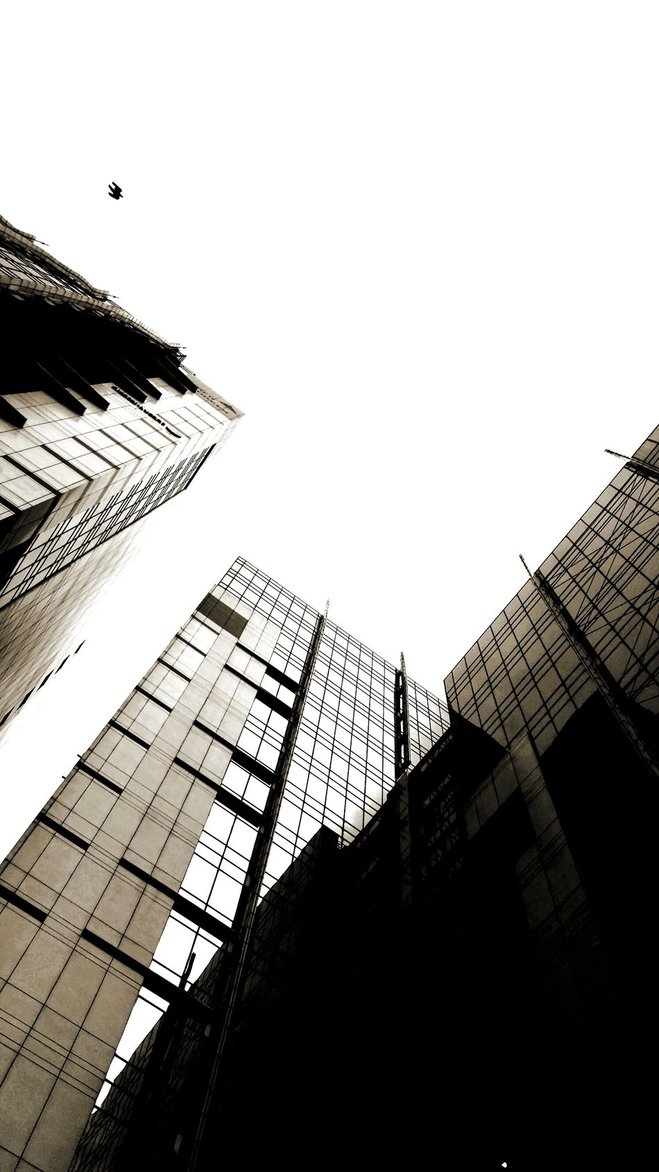 Skyline Architecture Building Exterior Architecture Building Exterior Low Angle View Built Structure Skyscraper City Tall - High Tower Sky Window Modern City Life Office Building Flying Outdoors Building Story Spire  Urban Skyline Day Development
