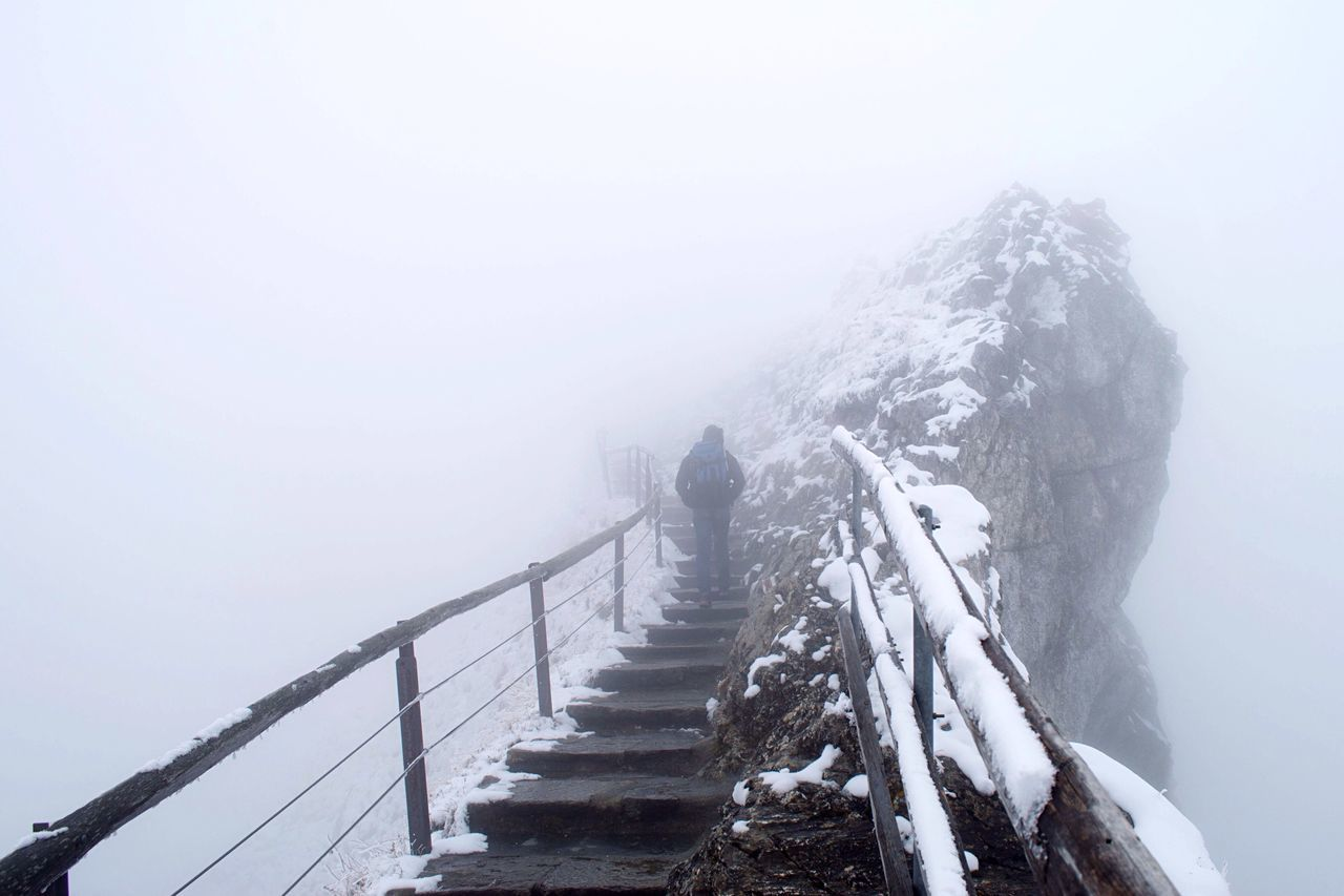 Beautiful stock photos of walk, Cold Temperature, Day, Fog, Leisure Activity