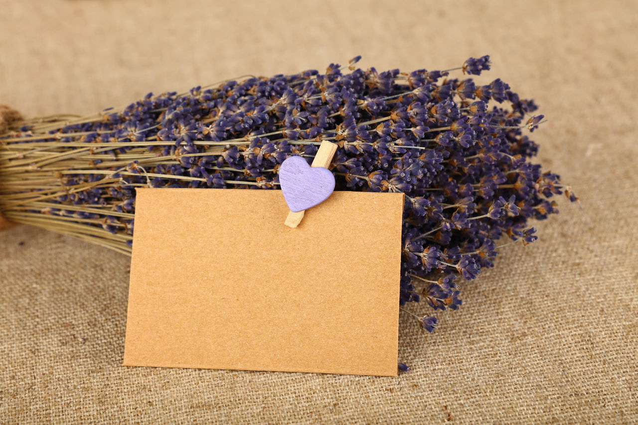 Beautiful bouquet of dried lavender flowers on brown linen canvas Bouquet Bouquet Of Flowers Brown Canvas Celebration Event Copy Space Dried Dried Lavender Flower Collection Flowers Heart Lavender Lavender Colored Lavender Flowers Lavenderflower Love Love ♥ Message Moment Mother & Daughter Paper Romantic Rustic Rusty
