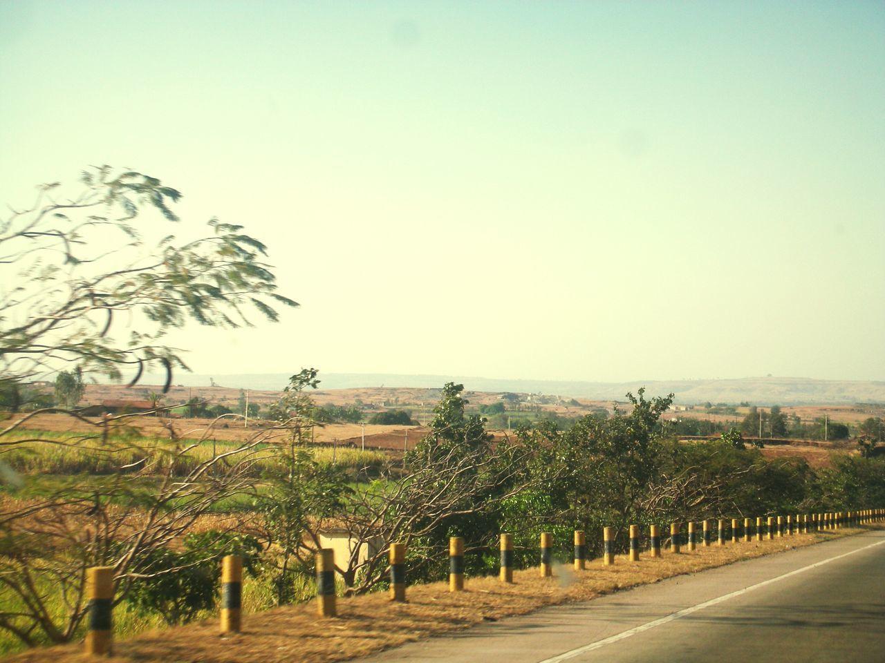 Freshness Roadtrip Mountain View