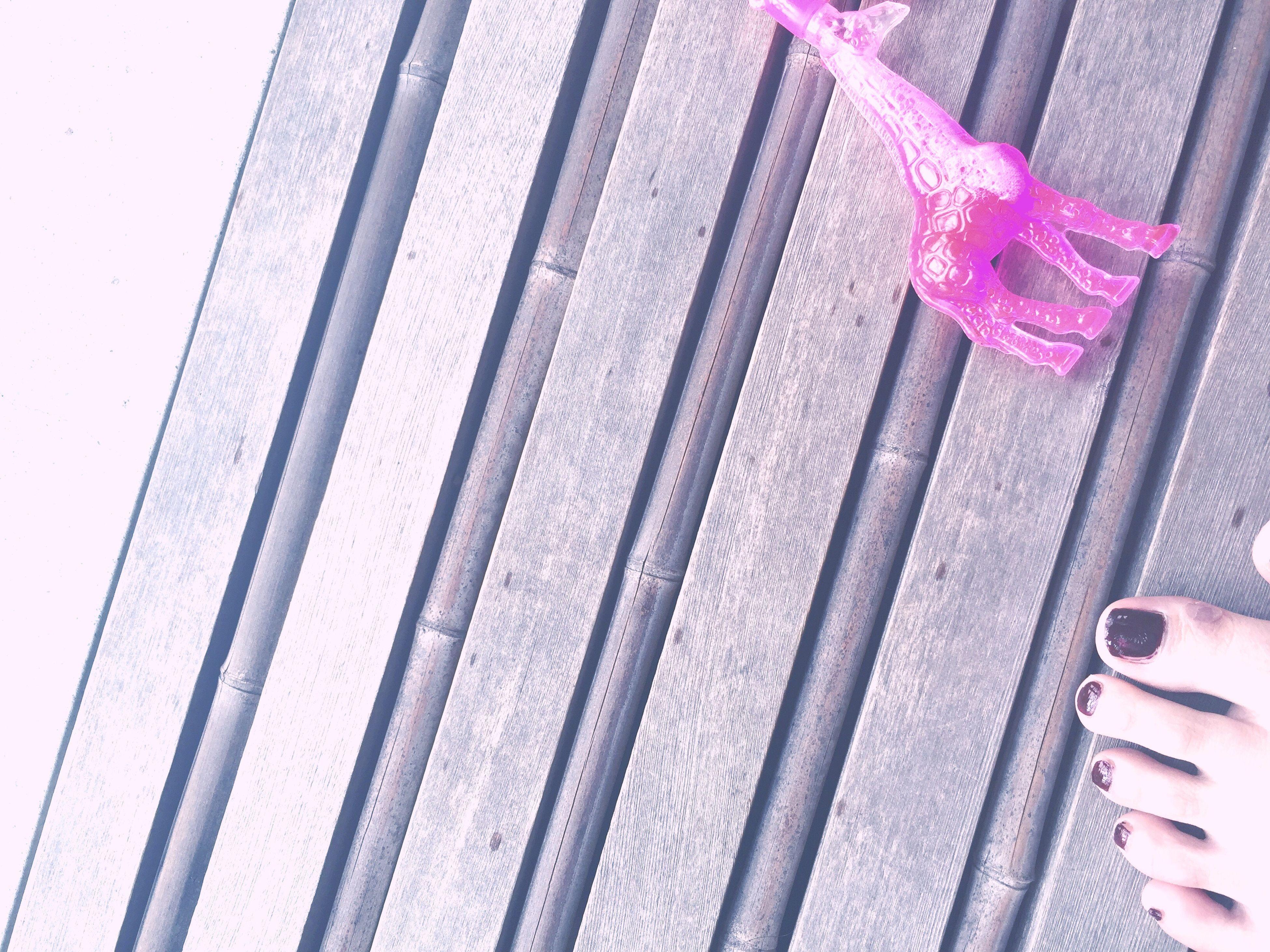 pink color, close-up, person, flower, collection, petal