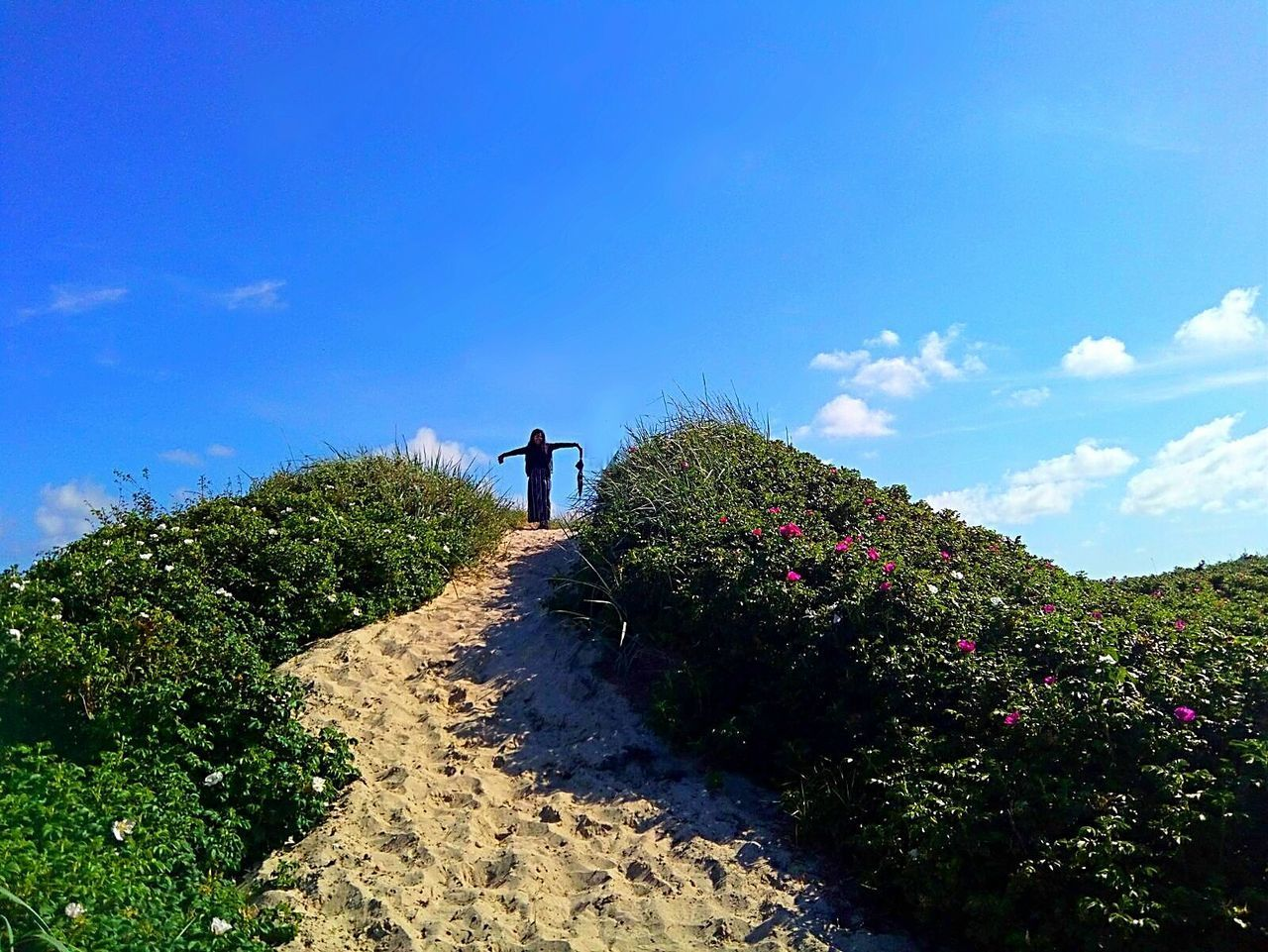 Silhouette Sky One Person Outdoors Blue Day Standing Beauty In Nature Statue Freeze Shrubs Bushes Beach Summer Brightday☀ Nature Hilly Beach Sunny Bluesky