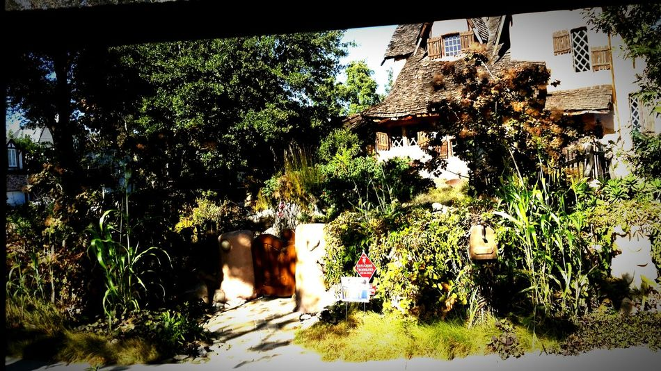 Hansel&Gretel House Beverly Hills California Trees House Classic Movie Location