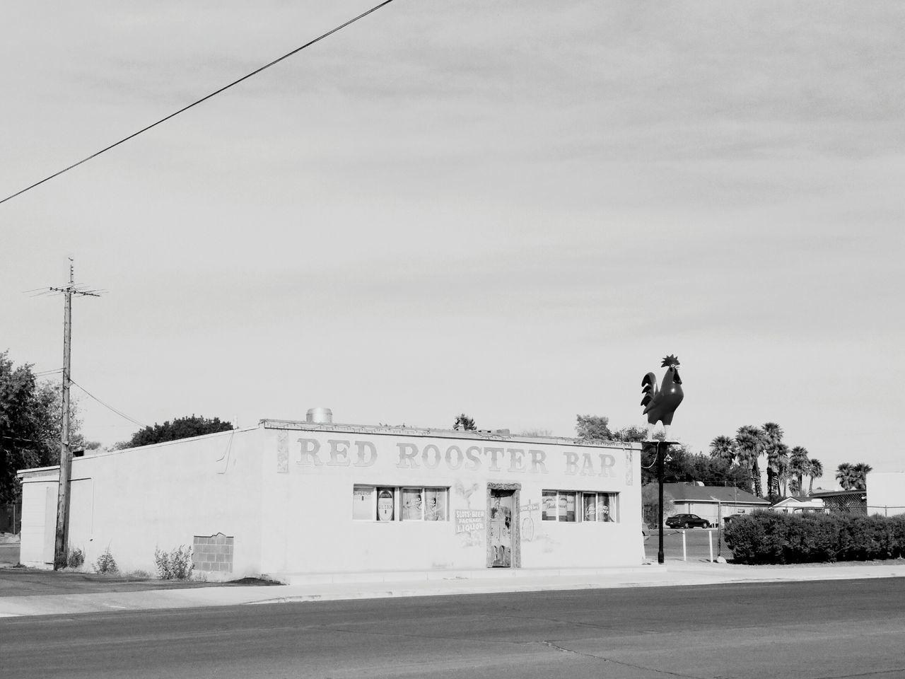Architecture Dive Roadtrippin' Roadtrip Desert Ontheroad Black And White Nevada Nevada Desert Blackandwhite Photography Beer Joint Icon Marketing Landmark Monochrome Photography