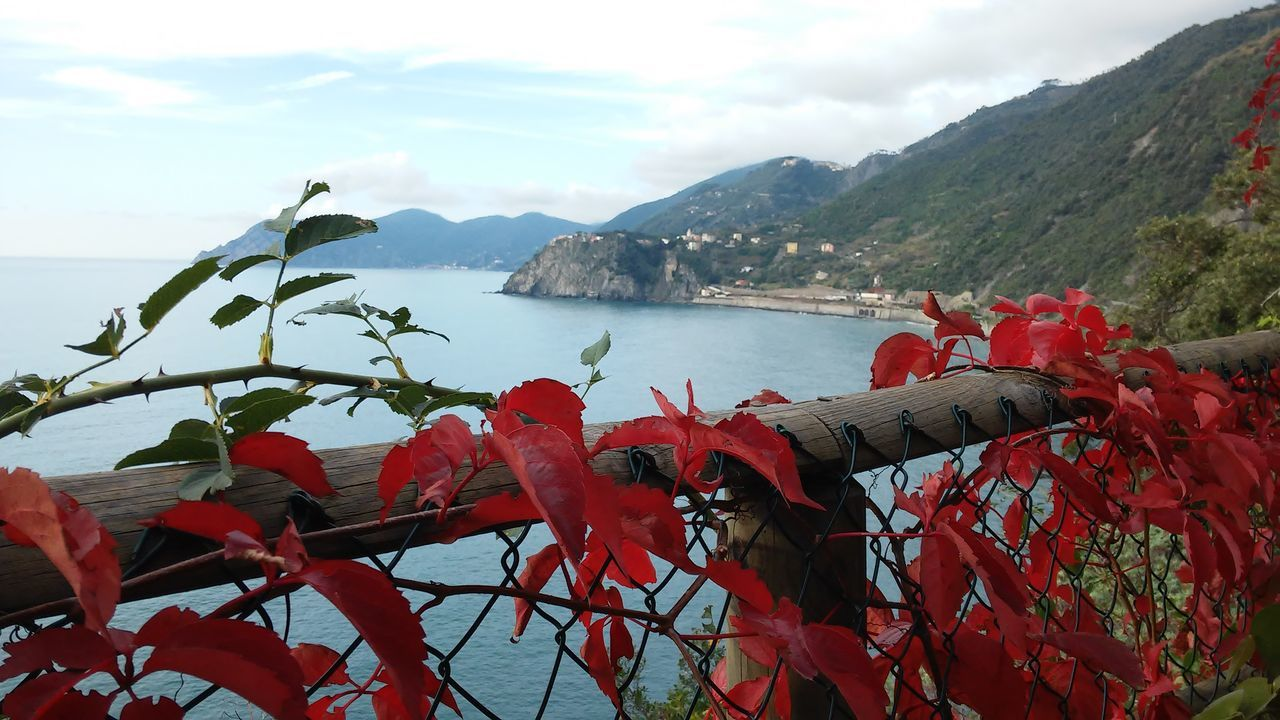 EyeEmNewHere Scenics Cinque Terre In Autumn