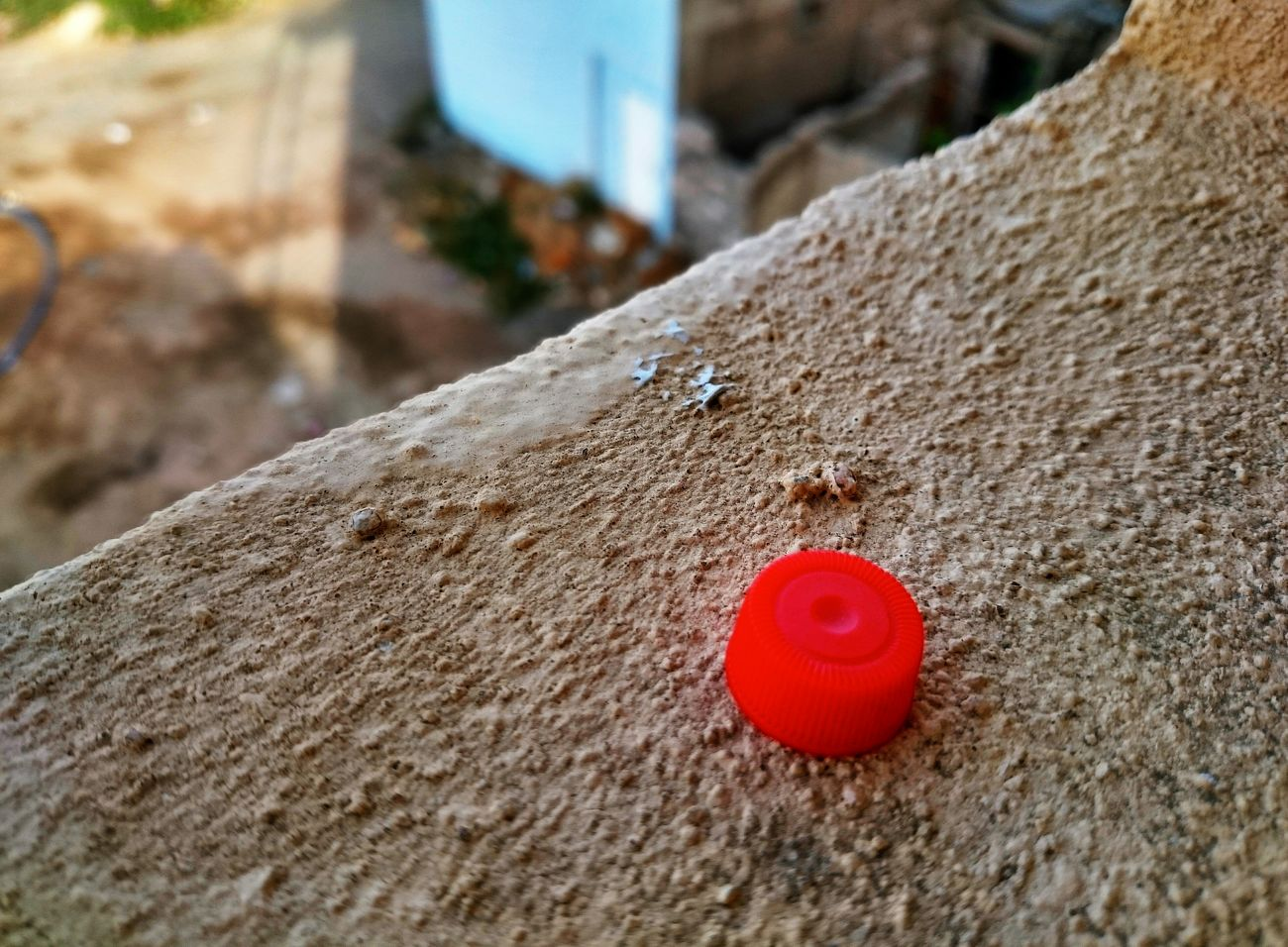From The Rooftop Good afternoon Red cap... Red Enjoying The Sun Taking Photos Hello World Check This Out Hanging Out Walking Around Enjoying The View Popular Photos Macro Beauty
