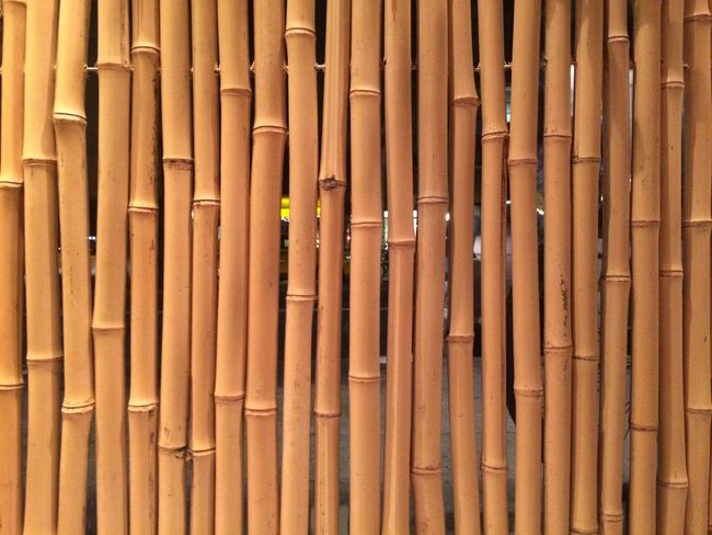 Bamboo Wall Window Blinds Background Wood Natural Surface Vertical Symmetry