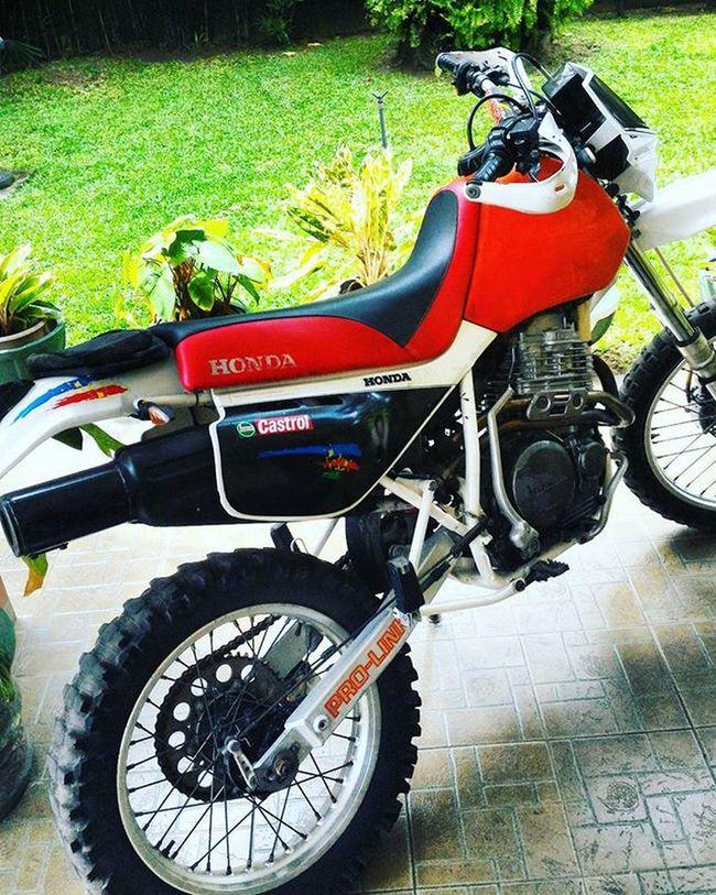 Honda Xr650 Justaquickride Dualsport Xr650r Enduro Motorcross  Endurocross Beast Hondababy