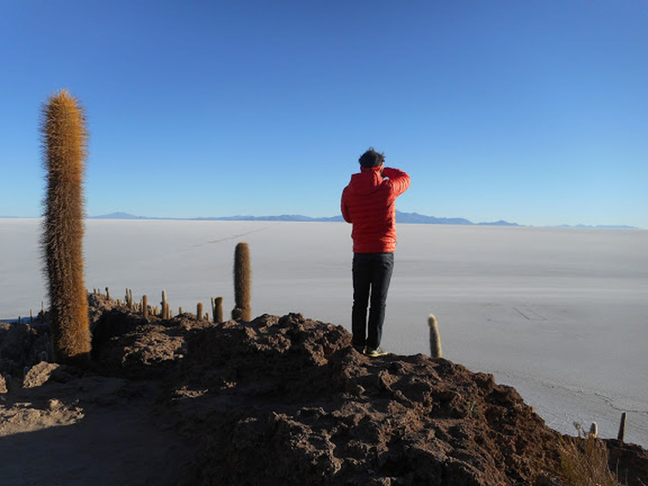 Adult Adults Only Beauty In Nature Blue Cactus Clear Sky Day Full Length Leisure Activity Nature One Man Only One Person Only Men Outdoors Panoramic People Photographer Rear View Rock - Object Salt Flat Scenics Sky Standing Travel Vacation