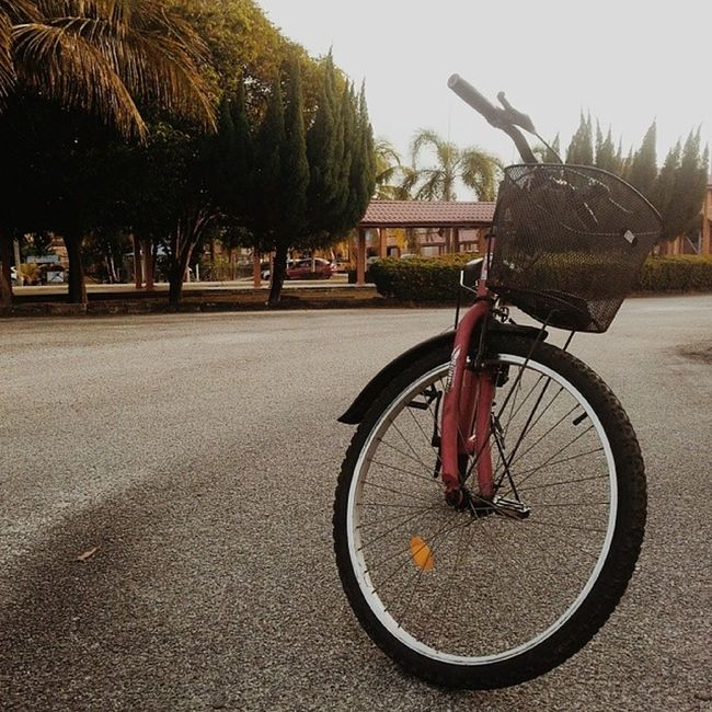 such a good day to cycle! weee~ I miss cycling, planning on buying my own bike... soon! hahaha XD plus, le me and le Azrul are teaching my roommate to learn cycling and he's a fast learner! go Caling! hahaha XD HWAITING! postscript: to the owner of the bikes, sorry for borrowing without permission XD we'll take good care of it! in syaa Allah~