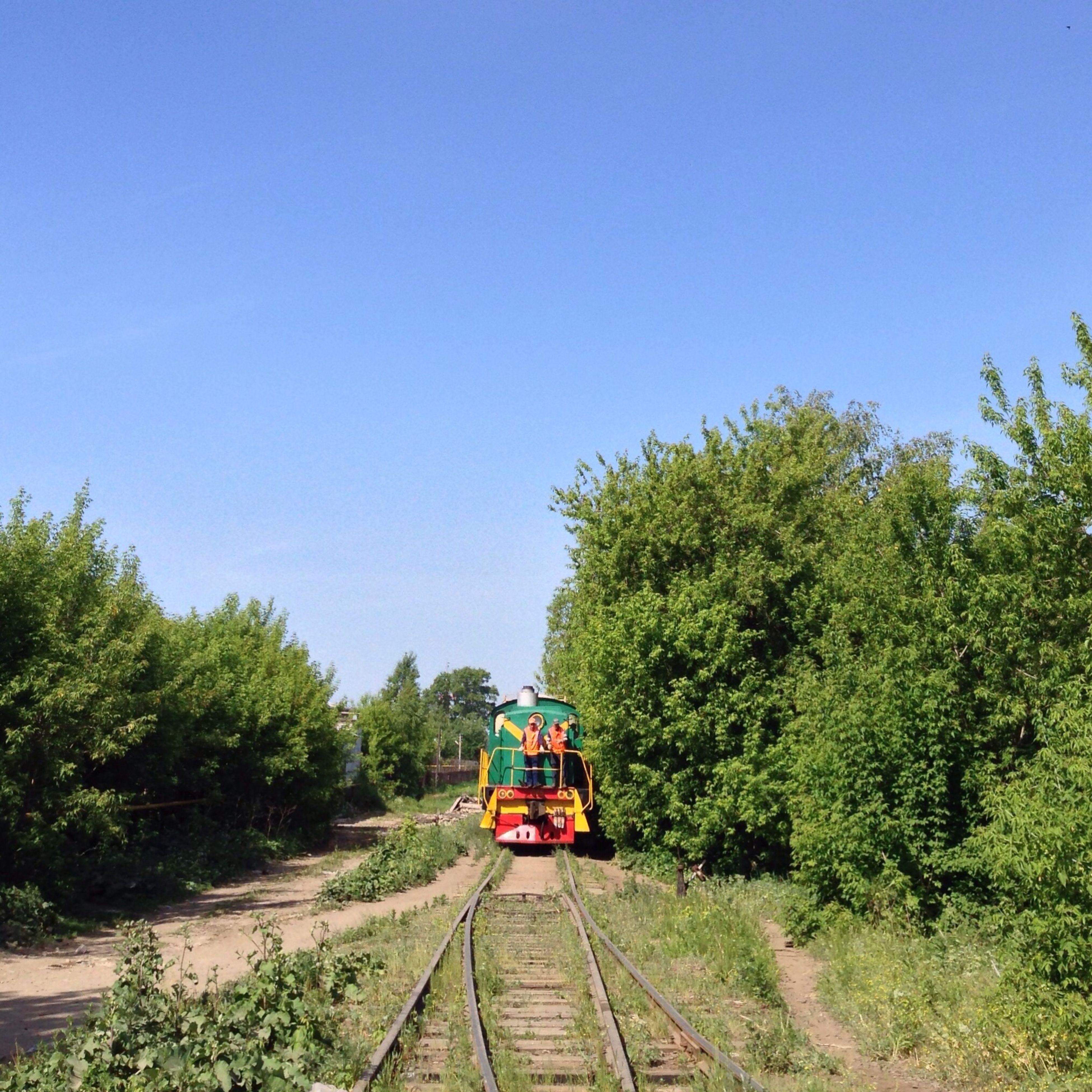 transportation, clear sky, tree, railroad track, mode of transport, land vehicle, rail transportation, the way forward, blue, green color, copy space, growth, day, public transportation, diminishing perspective, travel, road, outdoors, nature, car