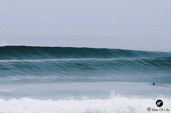 Left or Right 📷@berto_waveoflife Surf Surfing Barrel Surfers Surflife Surferphotos Surfers Waveoflife Waves Atlanticocean Francesurf France Capbreton Nikon Quicksilver Quikprofrance Quickpro Freesession Lines