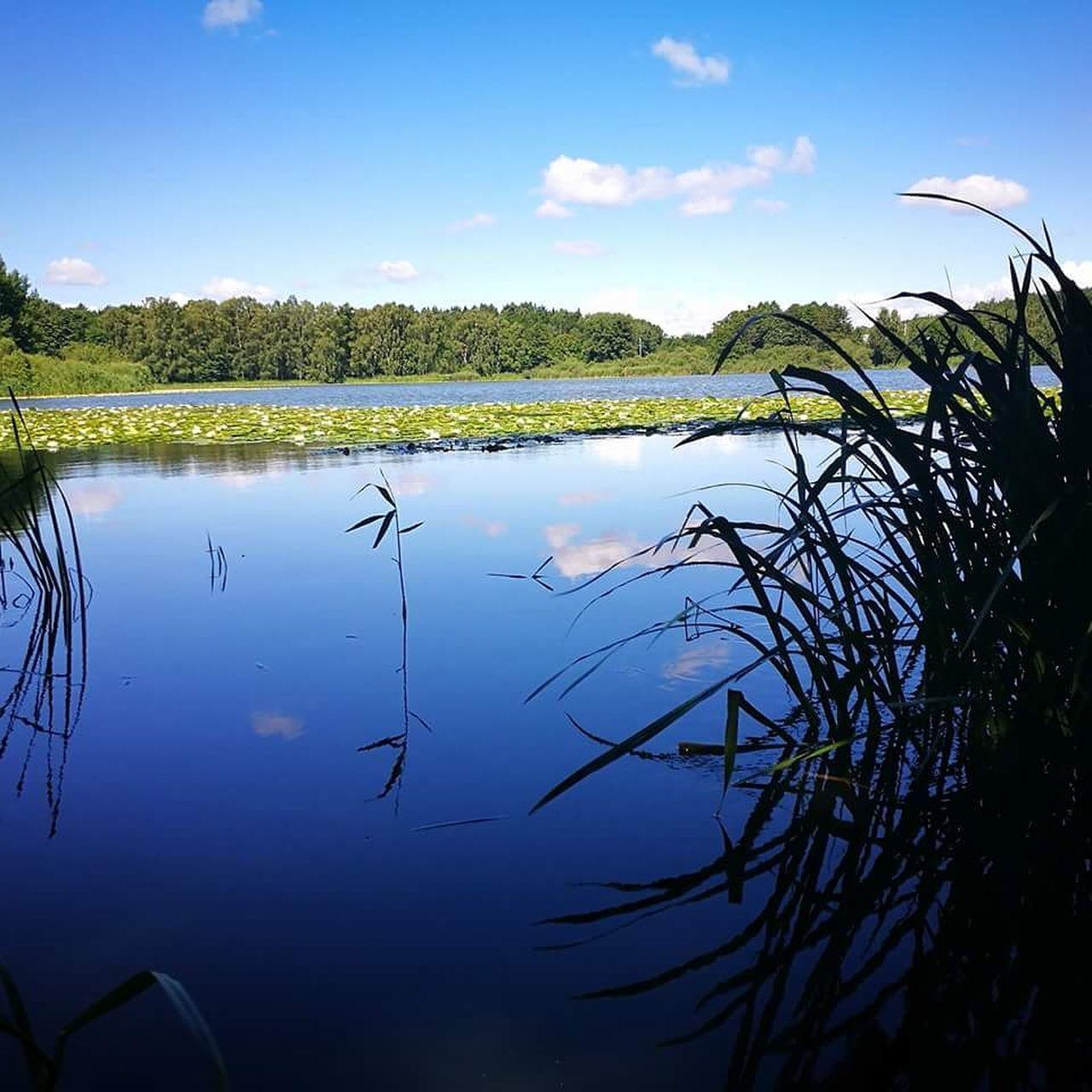 Lillsjönäs Bromma