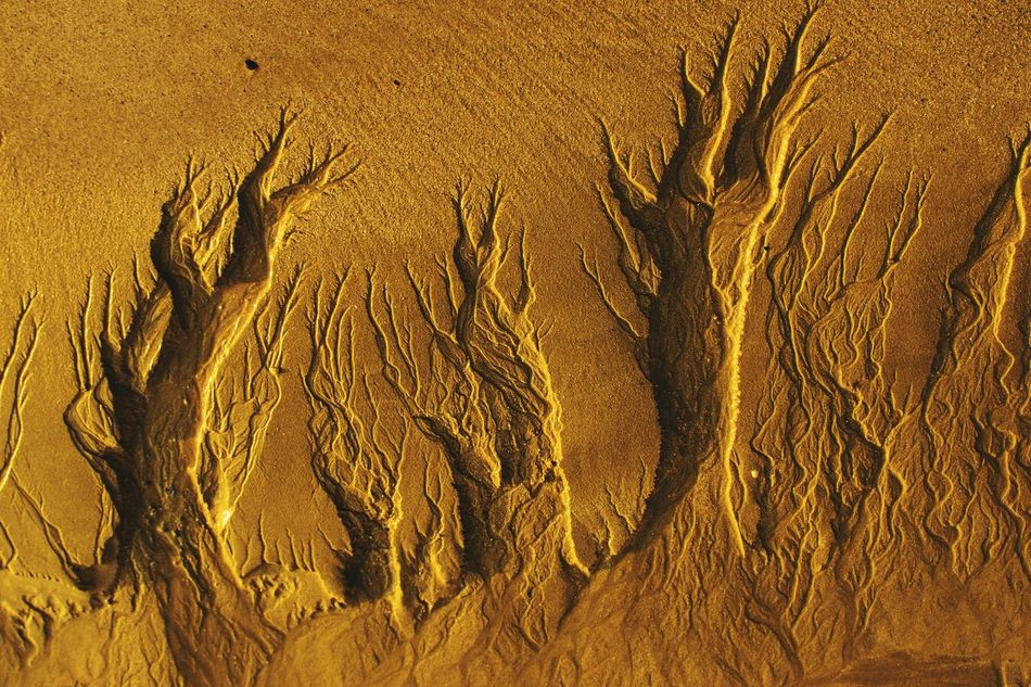 Nature's Wonder Sandy Beach Sculptures In Nature Erosion Flying High Like The Sky View Flying High Art Is Everywhere