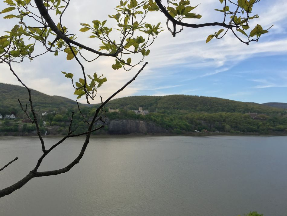 Tree Nature Water Beauty In Nature Scenics Sky Lake Tranquility Growth No People Tranquil Scene Mountain Branch Outdoors Foreground Landscape Day Hudson River Upstate New York Riverside Hill Hudson River Valley Valley Peaceful Springtime