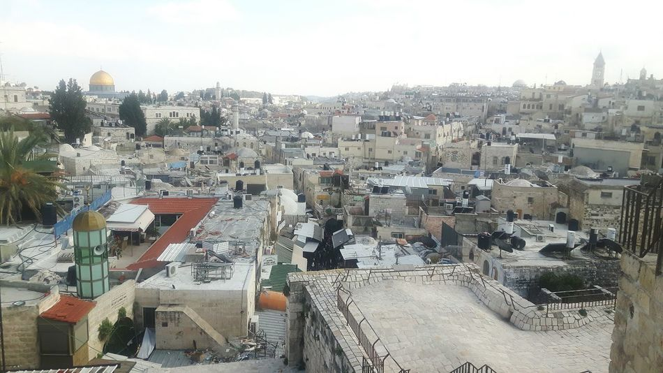 City Day Outdoors Sky Cloud - Sky Cityscape People Adult Architecture Mount Of Olives Israel Dome Of The Rock Tempelberg Tree Green Tree Temple Mount Jerusalem Stadtmauer Above Jerusalem Rampart Jaffa Gate Jerusalem Israel Ramparts Jerusalem City Wall Rampartswalk Jerusalem Ancient Rocks