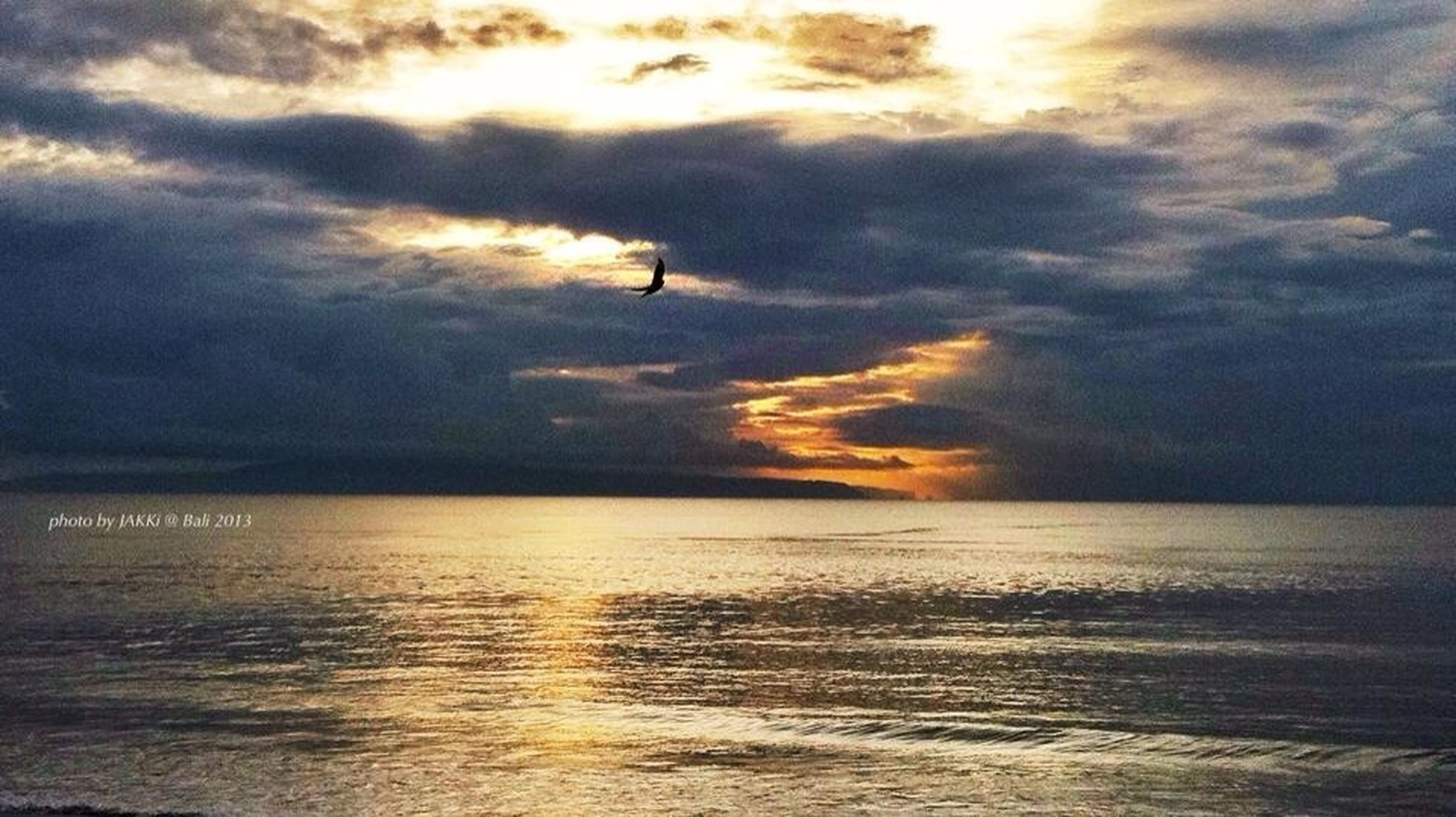 sky, bird, water, sea, sunset, scenics, horizon over water, cloud - sky, tranquil scene, beauty in nature, animal themes, tranquility, flying, one animal, animals in the wild, nature, silhouette, wildlife, waterfront, cloudy