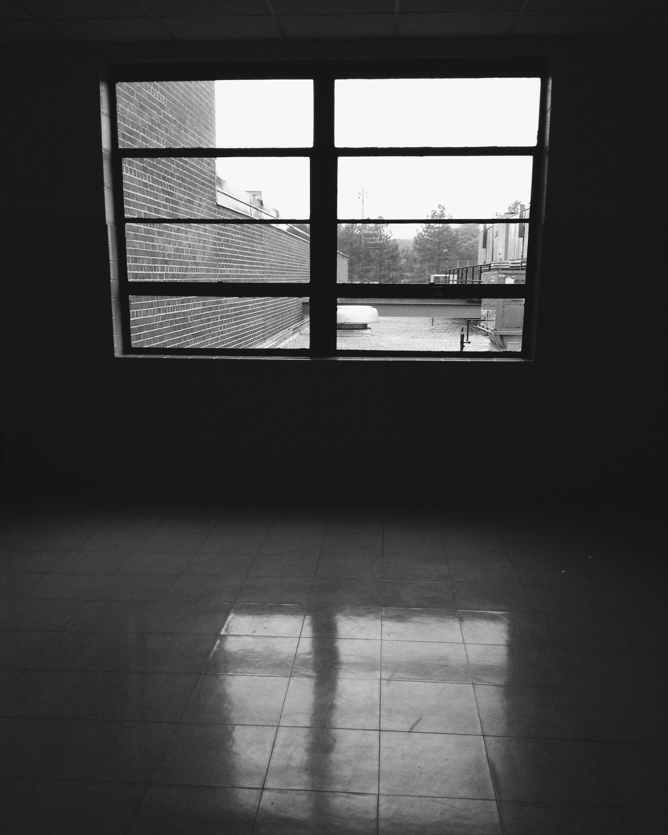 I'm Alone Again