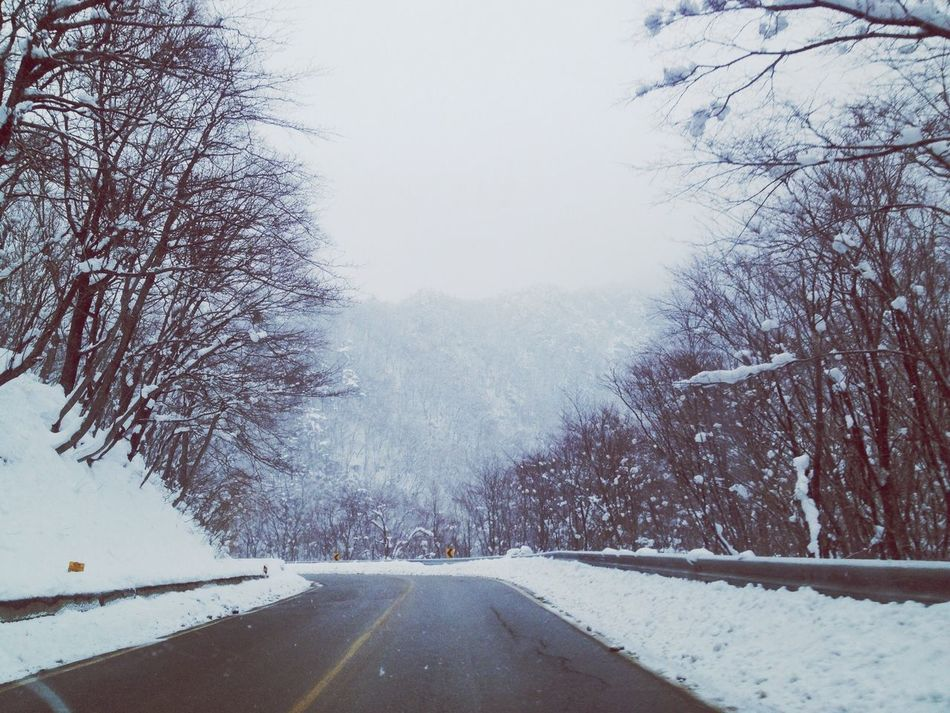Driving in a snowy day