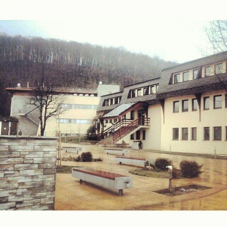 Petnica  Valjevo Petnica Memories Bmd