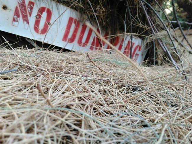 No Dumping. Needles CA Route 66 EyeEm Best Shots EyeEm Team Desert Life Poluted Earth