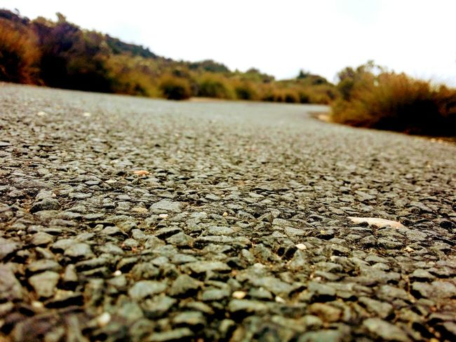 Pathway Australian Landscape EyeEmNewHere GALAXY S4