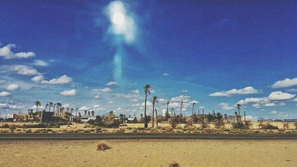 Desierto Palmeras Sol Calor PuebloFantasma