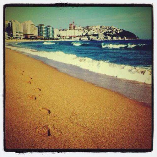 오랜만에 바다가서 사진찍고싶다