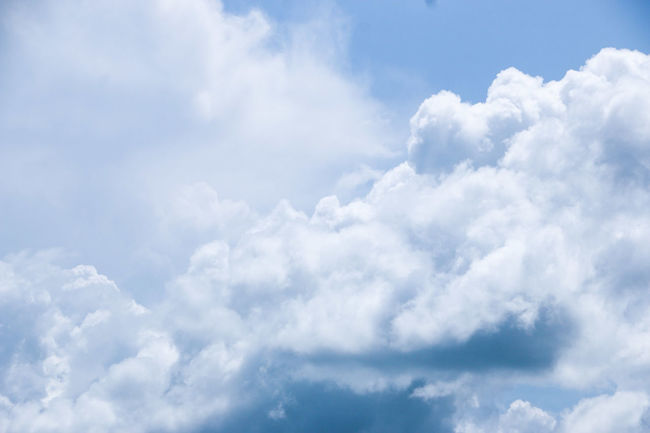 Backgrounds Beauty In Nature Blue Cloud - Sky Cloudscape Cumulus Cloud Day Environment Fluffy Heaven Horizontal Low Angle View Nature No People Outdoors Scenics Sky Sky Only Softness Weather White Color